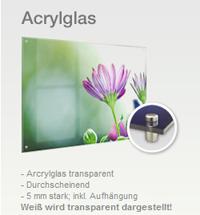 Wir zeigen Ihnen hier ein XXL-Bild hinter Acrylglas